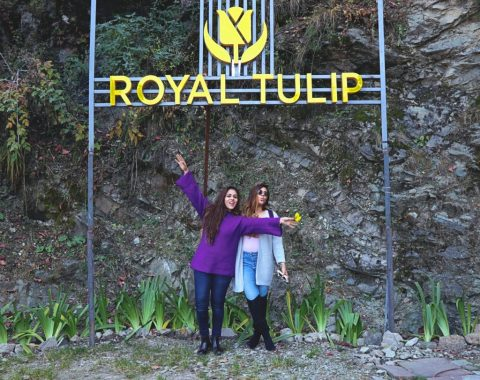 Royal Tulip Kufri