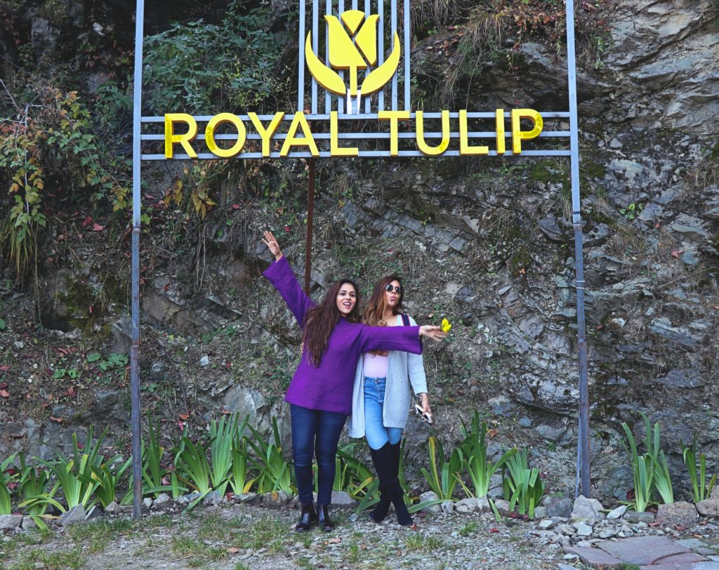 Royal Tulip Kufri, Travel, Travel Blog